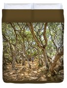 Among The Trees - The Mysterious Trees Of The Los Osos Oak Reserve Duvet Cover