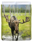 An Elk Standing In A Puddle Of Water Duvet Cover by Doug Lindstrand