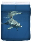 An Indo Pacific Bottlenose Dolphin Duvet Cover
