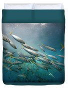 An Underwater View Of Schooling Fish Duvet Cover