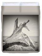 Analog Photography - Driftwood Duvet Cover