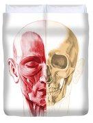 Anatomy Of A Male Human Head, With Half Duvet Cover by Leonello Calvetti