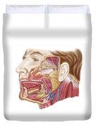 Anatomy Of Human Salivary Glands Duvet Cover