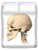 Anatomy Of Human Skull, Side View Duvet Cover