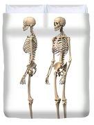 Anatomy Of Male Human Skeleton, Side Duvet Cover