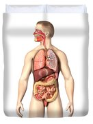 Anatomy Of Male Respiratory Duvet Cover