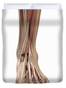 Anatomy Of The Foot Duvet Cover
