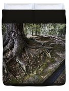 Ancient Trees Of Nara Park Duvet Cover by Daniel Hagerman