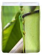 Andaman Day Gecko  India Duvet Cover