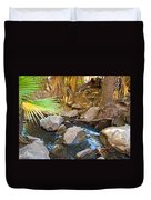 Andreas Creek In Indian Canyons-ca Duvet Cover