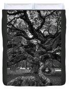 Angel Oak Tree 2 Duvet Cover