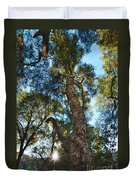 Angeles Sun -beautiful Tree With Sunburst In Angeles National Forest In The San Gabriel Mountails Duvet Cover