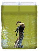 Anhinga Grooming Feathers Duvet Cover