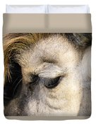 Animals Can Be Beautiful Duvet Cover
