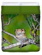 Annas Hummingbird Nest Duvet Cover