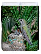 Annas Hummingbird With Young Duvet Cover