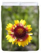 Annual Coreopsis Duvet Cover