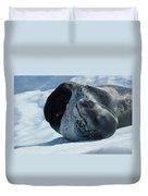 Antarctic Leopard Seal On Iceberg Duvet Cover