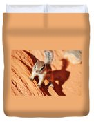 Antelope Ground Squirrel Duvet Cover