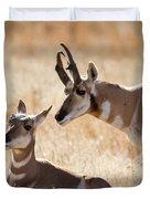 Antelope Love Duvet Cover