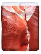 Antelope Passage Duvet Cover