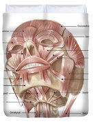 Anterior Neck And Facial Muscles Duvet Cover