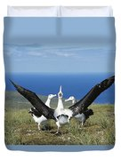Antipodean Albatross Courtship Display Duvet Cover