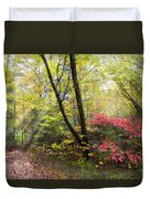 Appalachian Mountain Trail Duvet Cover