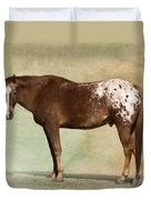 Appaloosa Duvet Cover