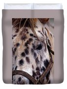 Appaloosa Duvet Cover by Skip Willits