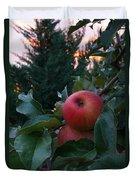 Apple Sunset Duvet Cover