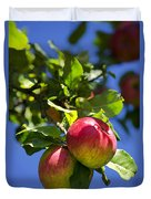 Apples On Tree Duvet Cover