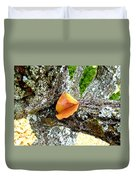 Apricot Leaf And Lichen Duvet Cover