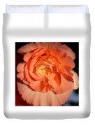 Apricot Pink Tuberous Begonia Duvet Cover