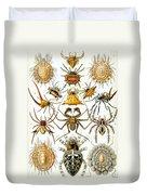 Arachnida Duvet Cover by Georgia Fowler