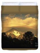 Araucarias At Sunset Duvet Cover