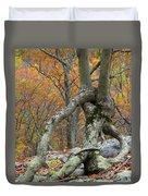 Arboreal Architecture Duvet Cover