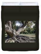 Arboretum Tree Duvet Cover by Daniel Hagerman