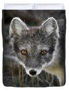 Arctic Fox In Summer Coat Duvet Cover