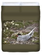 Arctic Tern In Its Nest Duvet Cover