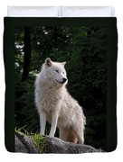 Arctic Wolf On Hill Duvet Cover