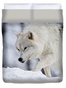 Arctic Wolf Pictures 1054 Duvet Cover