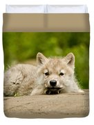 Arctic Wolf Pictures 1118 Duvet Cover
