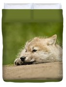 Arctic Wolf Pictures 1121 Duvet Cover