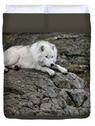 Arctic Wolf Pictures 1142 Duvet Cover