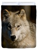 Arctic Wolf Pictures 1224 Duvet Cover