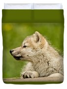 Arctic Wolf Pictures 340 Duvet Cover