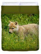 Arctic Wolf Pictures 341 Duvet Cover