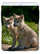 Arctic Wolf Pictures 346 Duvet Cover