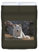 Arctic Wolf Pictures 518 Duvet Cover